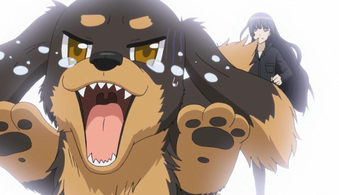 11月11日はワンワンワンワンの日ということで、やっぱり「犬とハサミは使いよう」の日!?