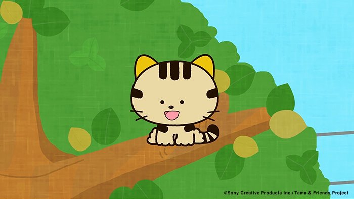 アニメ タマ&フレンズ~うちのタマ知りませんか?~ 今日のお話は「トラは元気です」今日も元気なトラはどこで何してるかな?