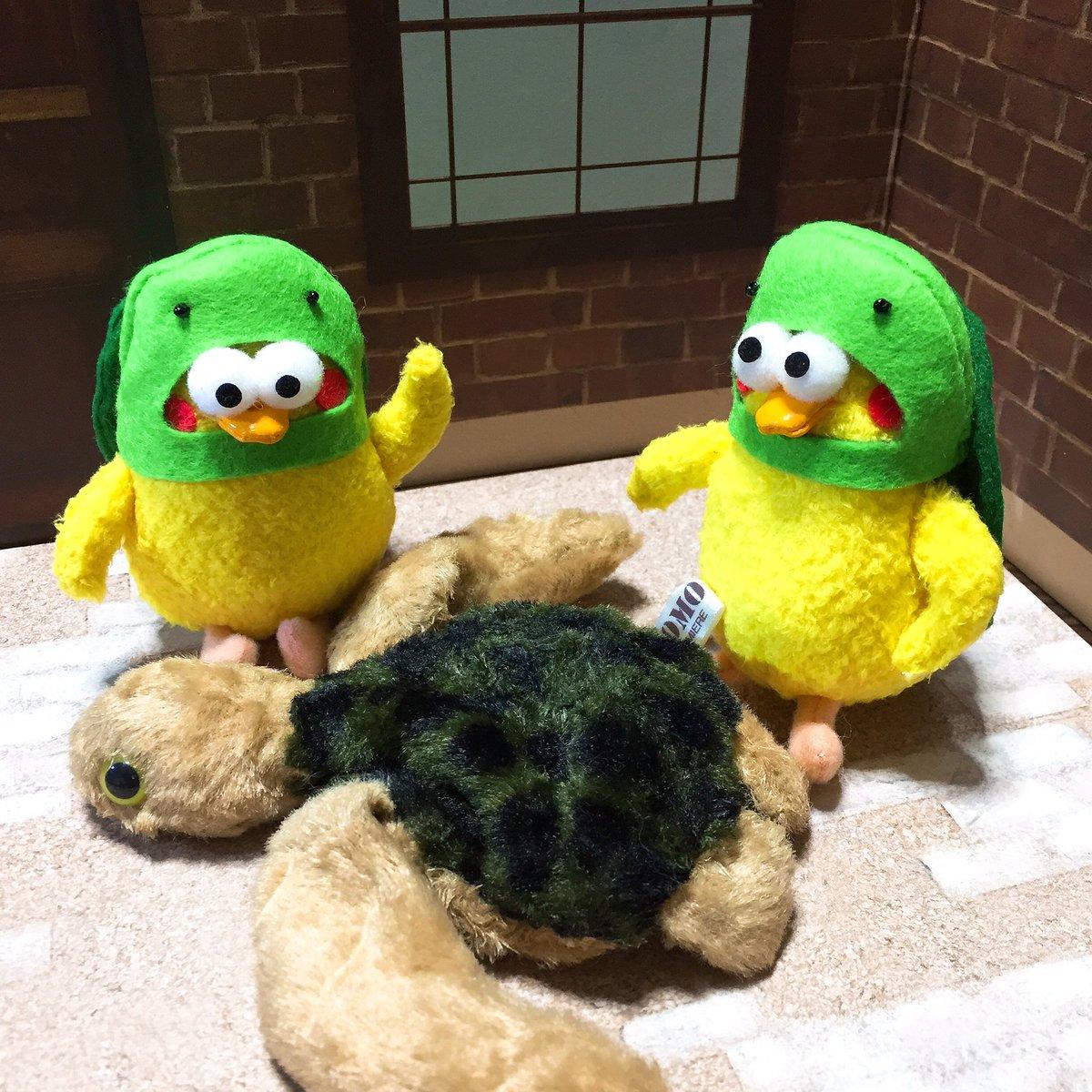 もしもし亀よ〜CMの亀さんコスプレ🐢 ポインコ兄弟
