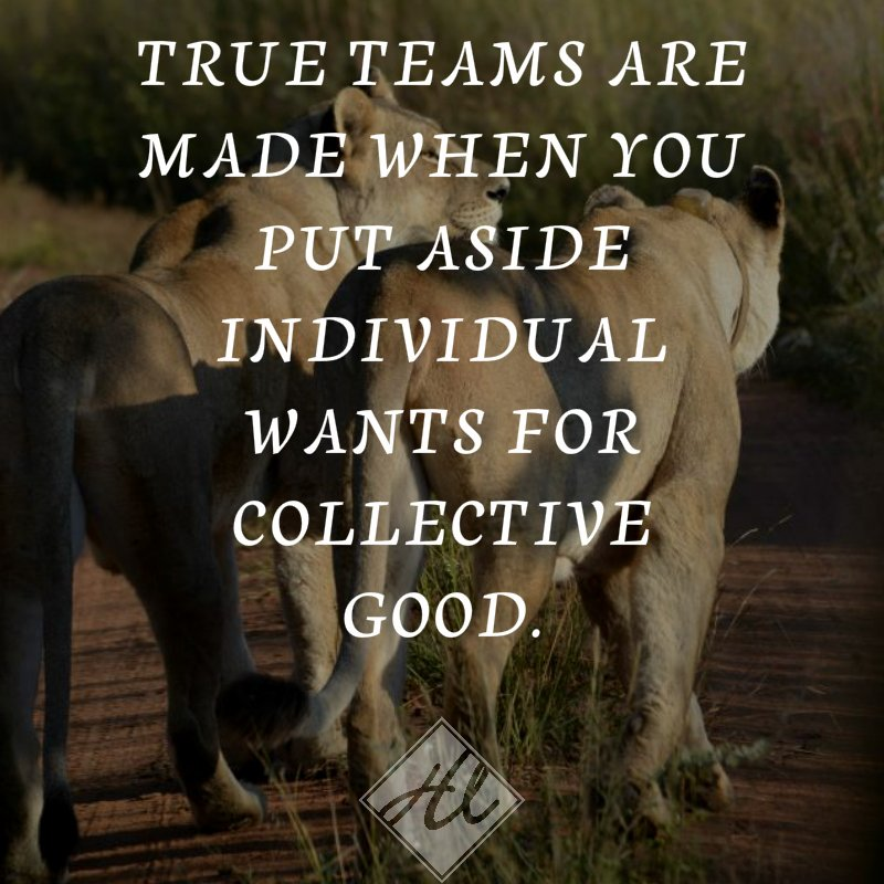 True teams are made when you put aside individual wants for collective good  #bestlifecommunity #team #teamwork #success #entrepreneur https://t.co/BJQUikLLNa