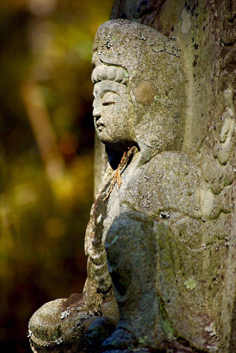 いしぼとけさん。秋冬は光の当たり方が好き。このレンズ、シャープに写る。ミノルタ、ロッコールレンズ。