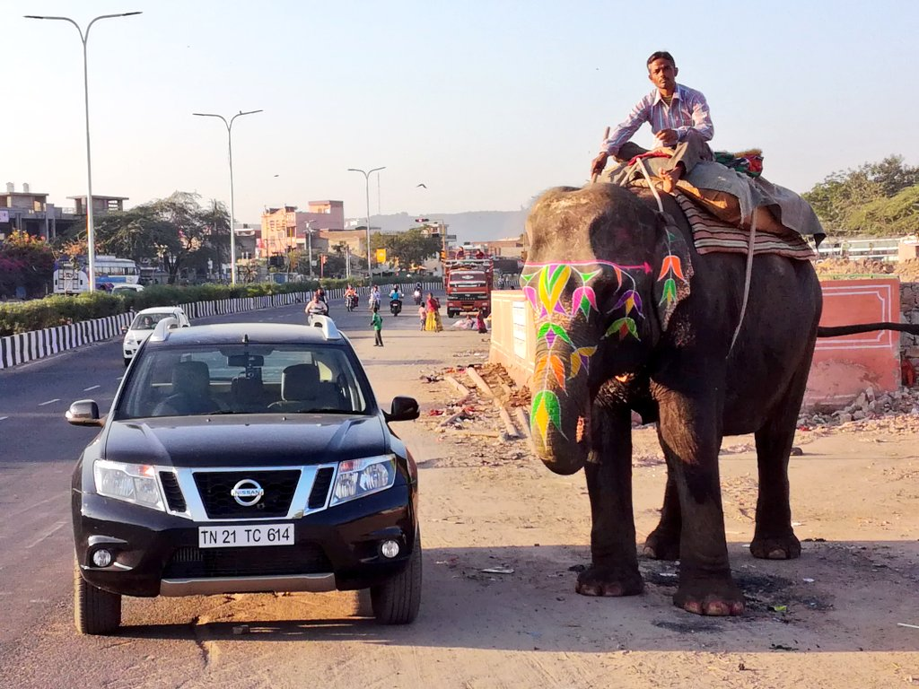The two showstoppers on the roads of Jaipur #CommandsRespect https://t.co/hplWlSygnn