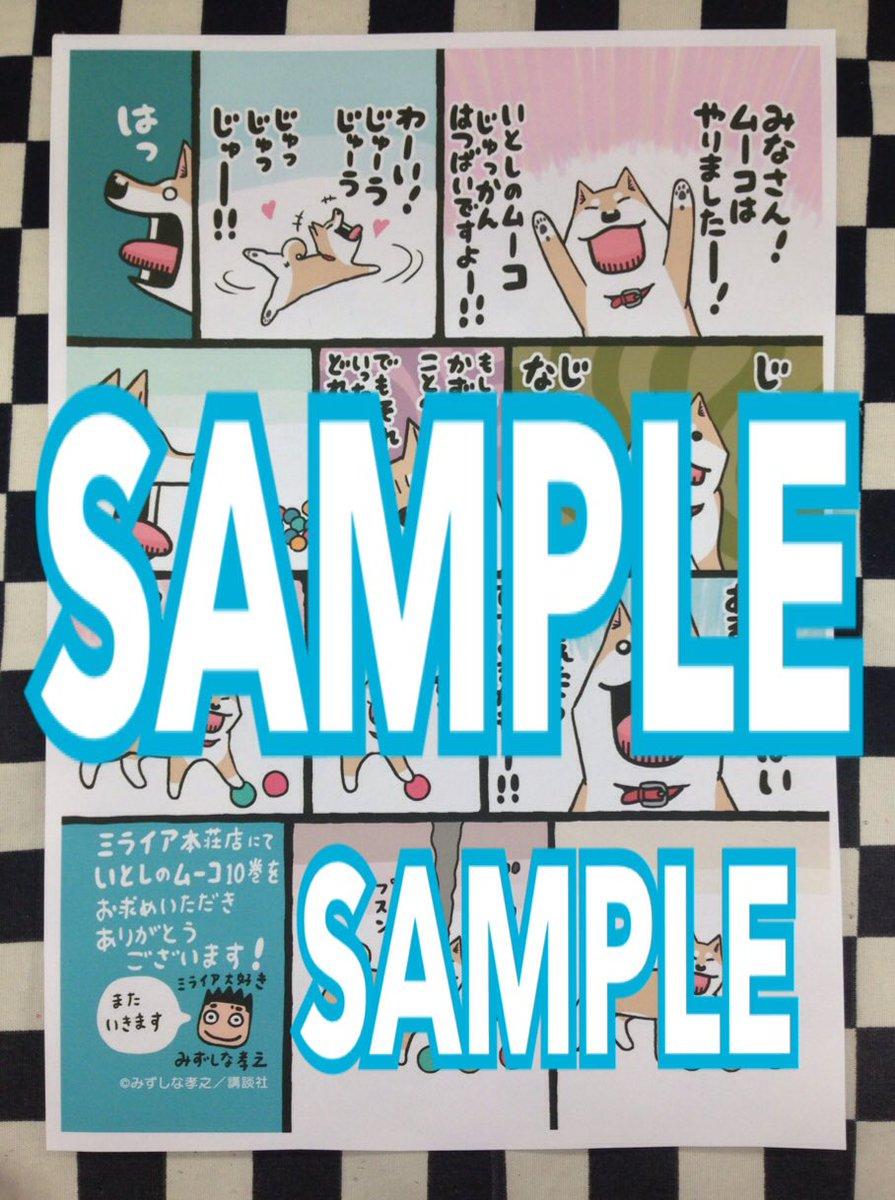 「いとしのムーコ」の新刊が入荷しましたよー!!10巻は可愛い卓上カレンダー付きの限定版と通常版が発売されています!そして