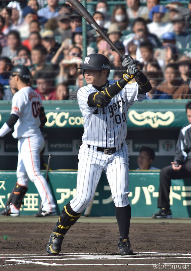 柴田講平の画像 p1_31