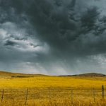 Thunderstorm asthma - things you should know - myDr.com.au