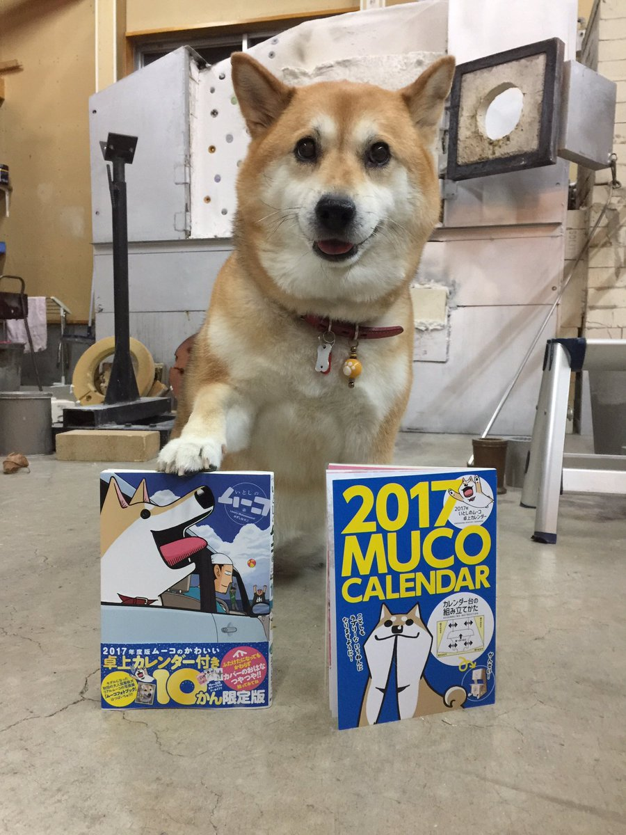 みずしなさんの『いとしのムーコ』10巻もはつばいちゅうですー!カレンダーつきもあります!そしてみなさま!フォトブックのか