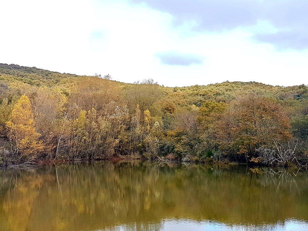 #nofilter #water #<b>Umbria</b> #italy #carpfishing #carpfishing #hotspot #ambient #cold https://t.c