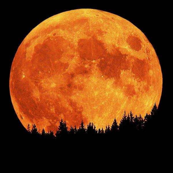 The Best time to see the SUPER SUPER FULL MOON is: Tonight, Tomorrow Morning and Tomorrow Night! https://t.co/1BSLB5lBfb