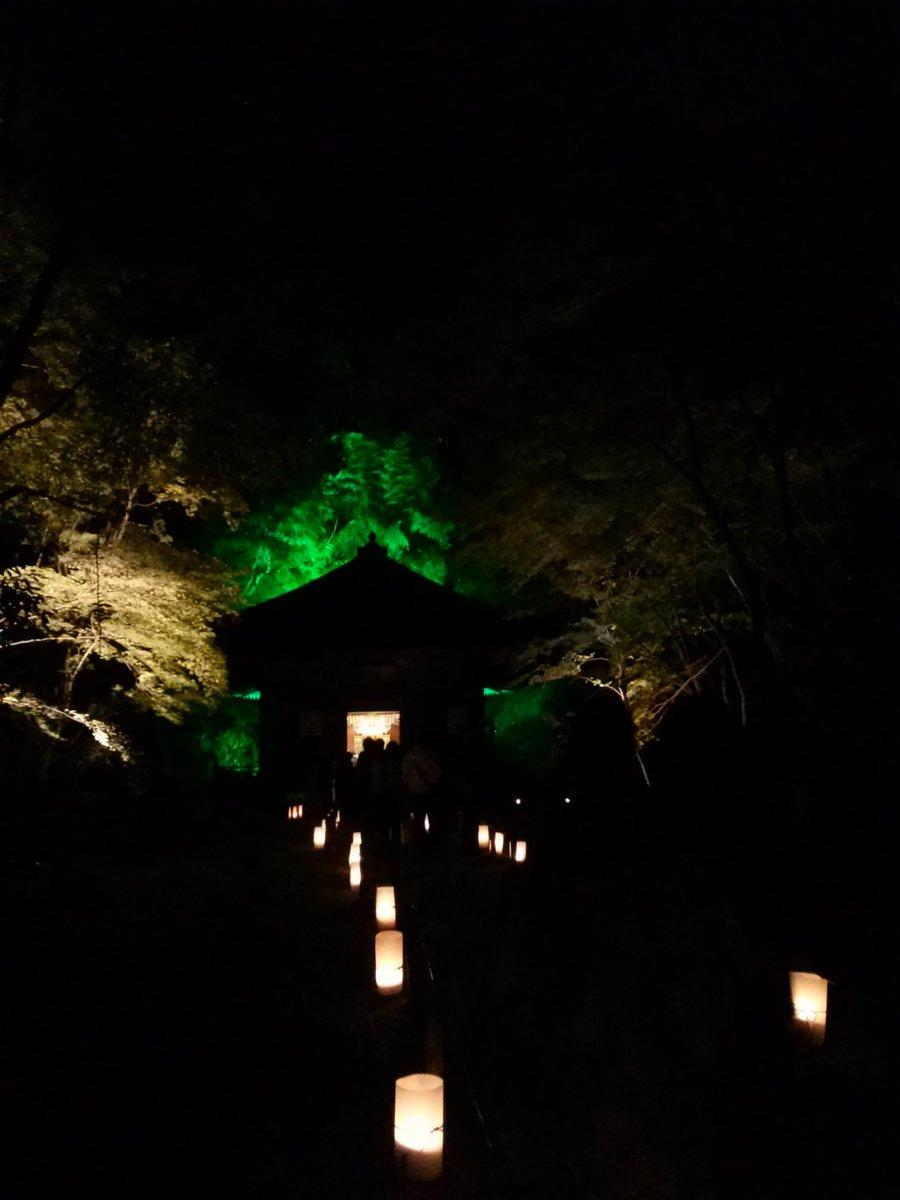 松島の円通院は政宗公の孫、伊達光宗の菩提寺です。光宗の霊廟である三慧殿(重文)にもお参りできます。この写真だと迷い家(マ