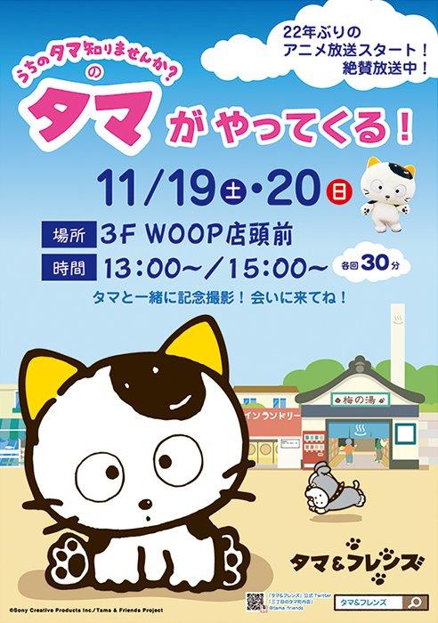 2016年11月19日(土)・20日(日)WOOPイオン横須賀店にタマがやってきます!各日 13:00~/15:00~カ