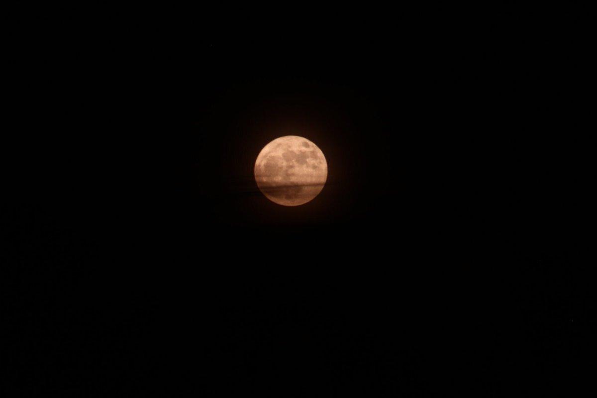 قمر الليل