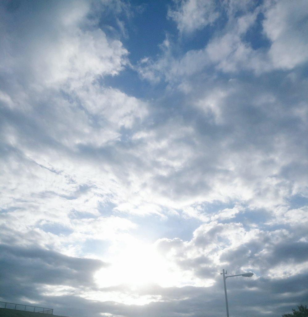 どんな気分の朝だって、それでも世界は美しい(おなすいの句)