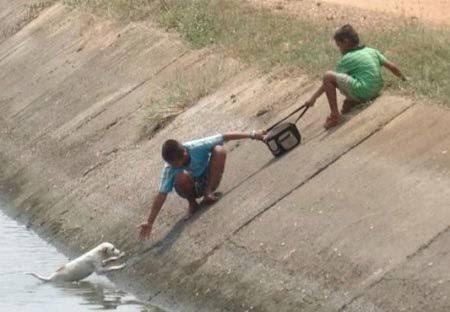 #OMundoPrecisaDe: O Mundo Precisa De