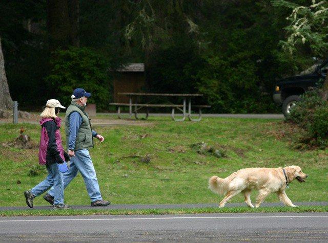 Visit a state park for free Nov.25 https://t.co/IbanG1EUBU https://t.co/pMrWbqn0sz