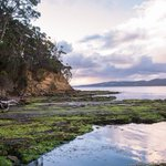 In Southern Tasmania, Great Food and Rugged Appeal