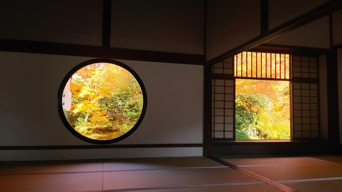 落ち着いたので!昨日の京都観光とてもとても楽しかった( *´︶`*)京騒戯画に出てきた○と□の窓がある源光庵!