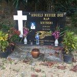 Antonio Bagnato's testimony undermined in Thai bikie murder trial