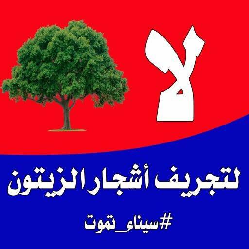 #صرخه_سيناء: #صرخه_سيناء