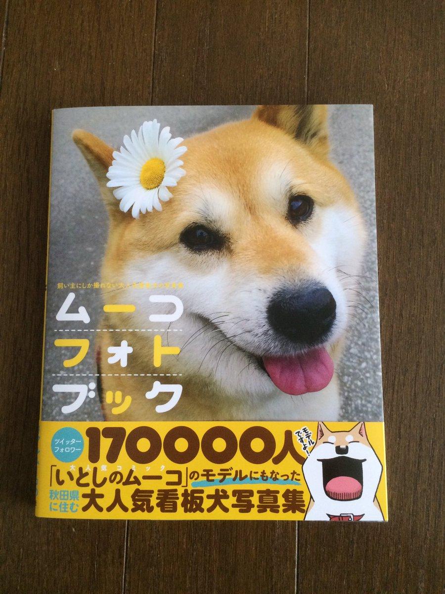 ムーコちゃんの写真集が届いた〜〜o(^▽^)o#いとしのムーコ