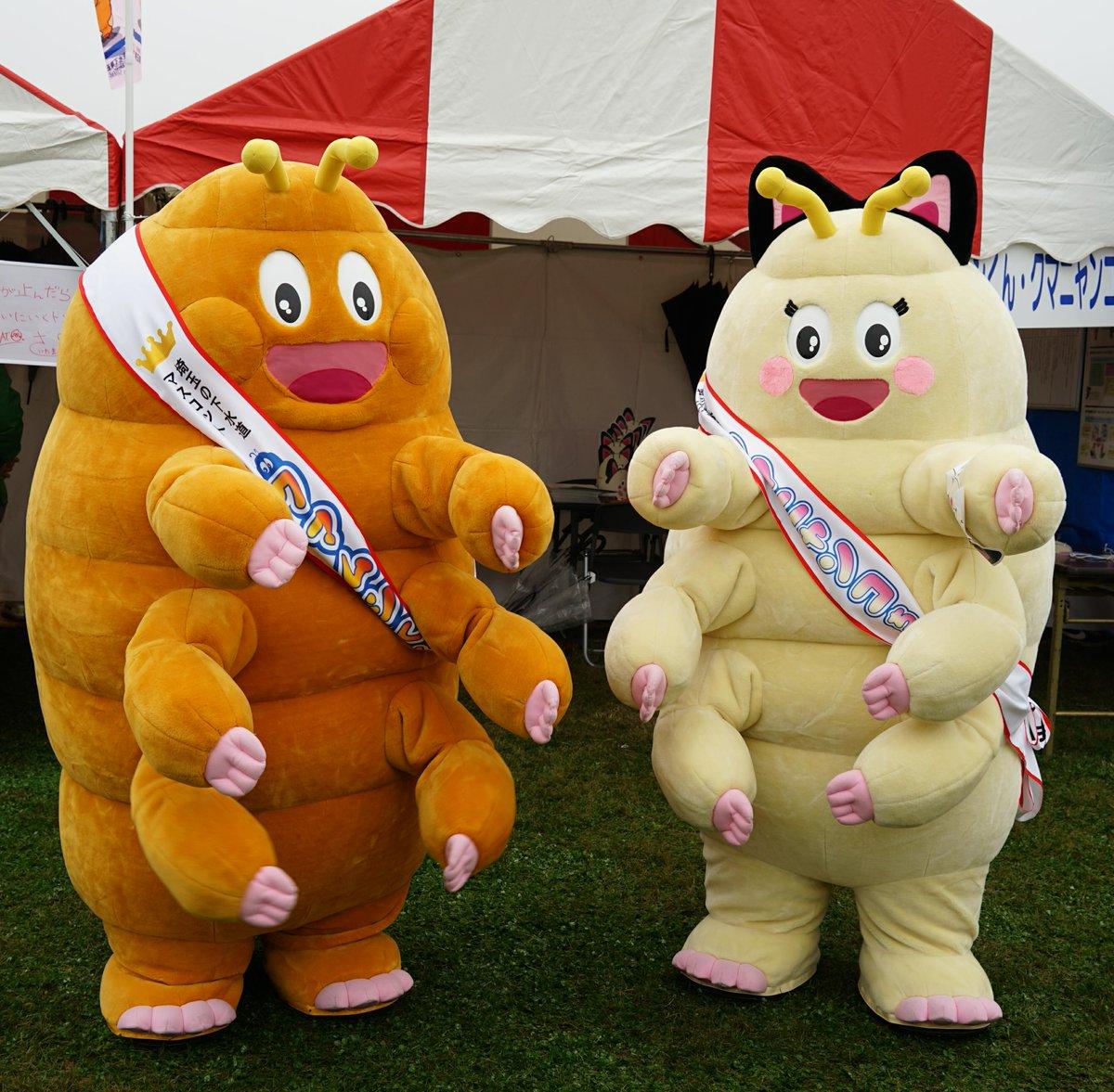 見た目がちょっと気持ち悪い、埼玉県下水道公社の「クマムシくん」「クマニャンコちゃん」。これでも昨年の下水道展では全国のキャラの中で1位だったとか。可愛い「クマムシさん」とは別のキャラなので注意。 https://t.co/o3Amxx0DvU