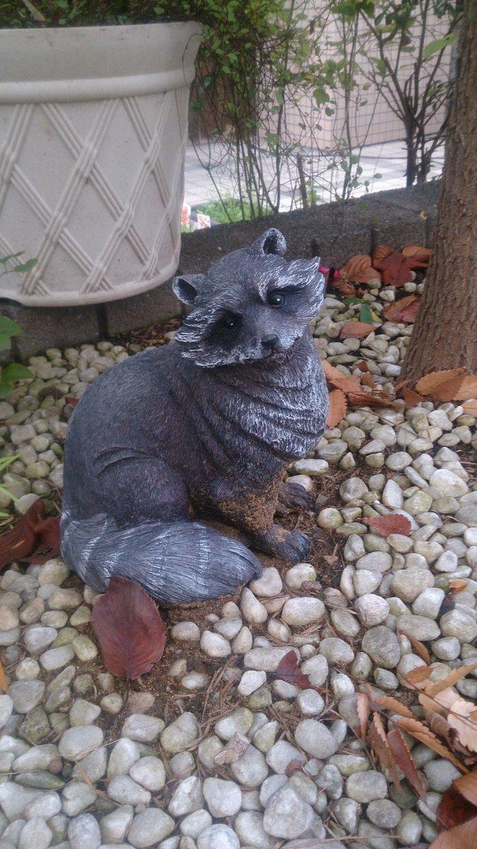 町で見つけためちゃ可愛いタヌキの置物と、キュートなタヌキの物語「有頂天家族」の筆者、森見登美彦氏。ちなみに、登美彦氏に腐
