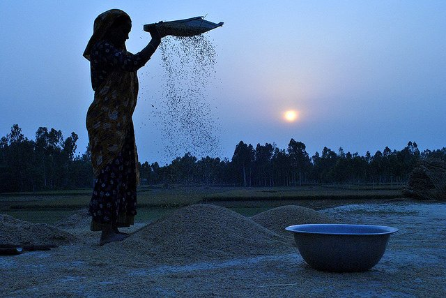 Small Farmers Are Not Who You Think: How Female Farmers Are Feeding The World https://t.co/y0rcJhbnMN https://t.co/YeCLzw6K2A
