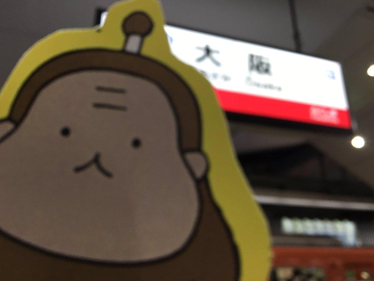 ウキ。#ねこねこ日本史