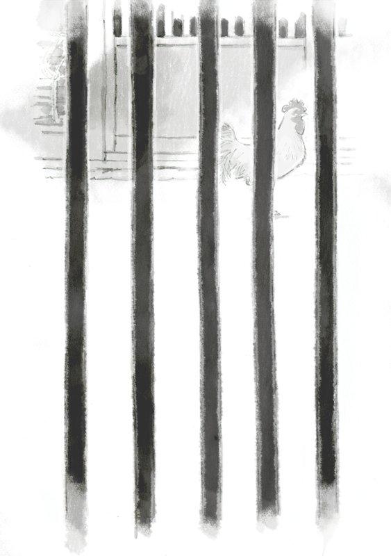 ポプラ社さんより出てます『銀の匙』、前編の扉挿絵で鶏描きましたが、結構気に入ってます