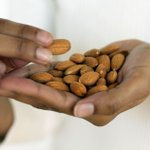 Eat a handful of nuts daily to slash your risk of heart disease and cancer