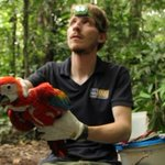 Canberra world premiere for documentary film of Peru's grand parrots