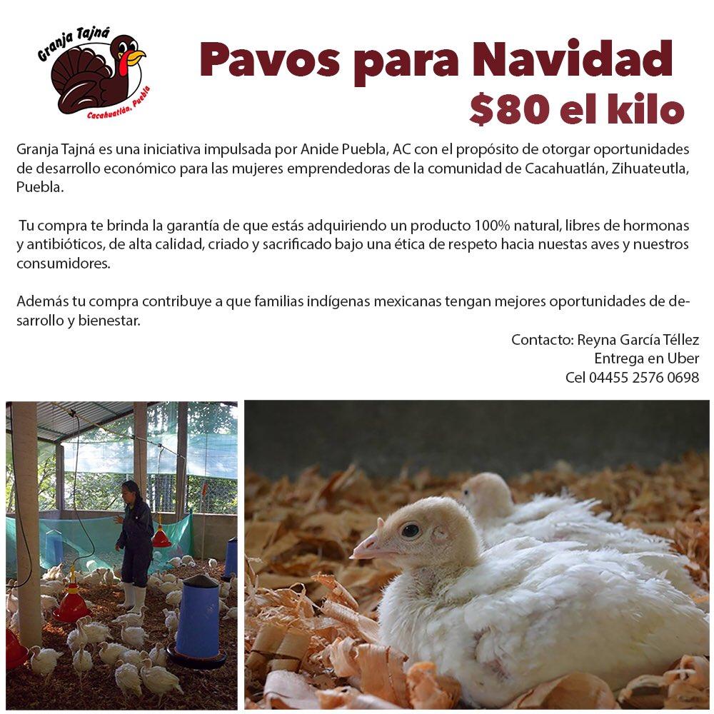 Aparten su pavo (libre de hormonas y antibióticos) y apoyen a mujeres indígenas del campo mexicano. #acocinar https://t.co/GjFJvShART