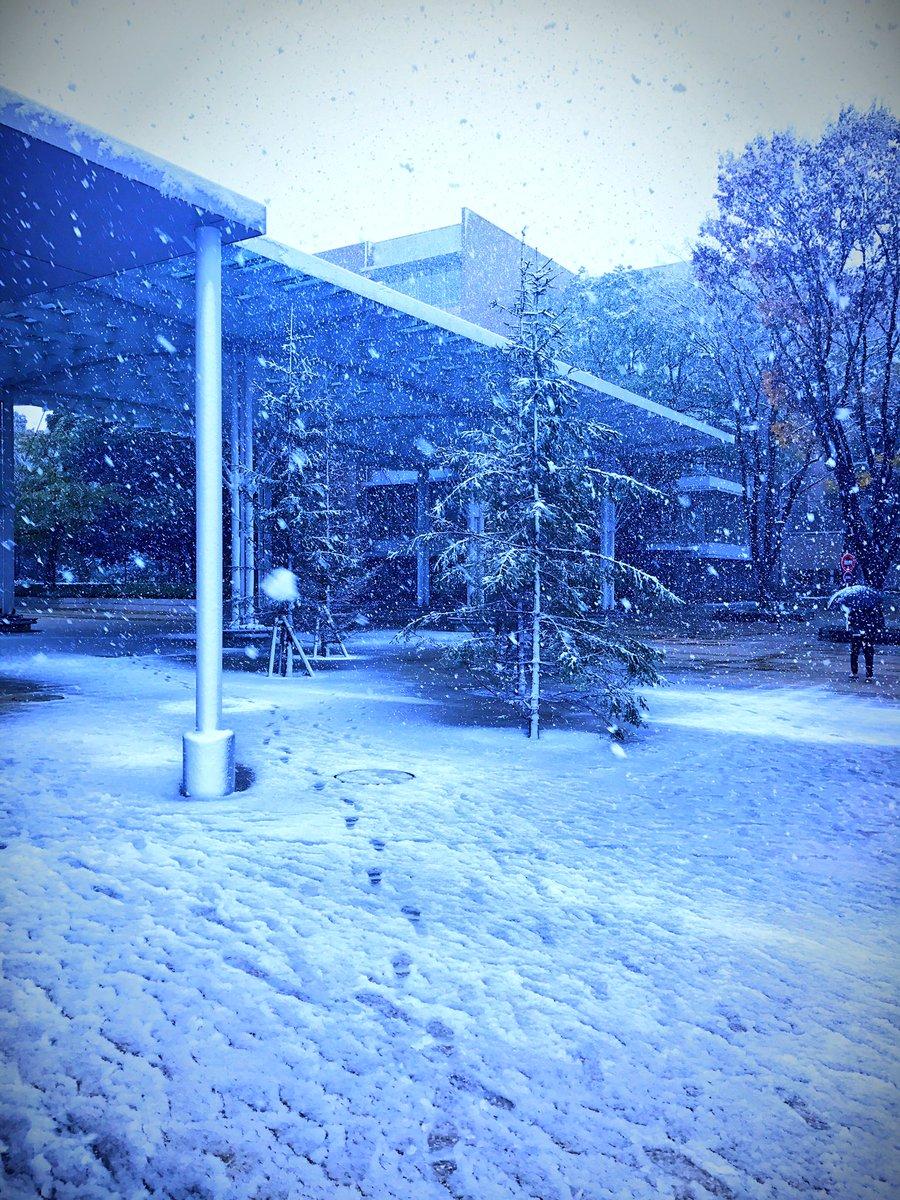 今日の六会の⛄雪景色❄も最高に✨清楚✨でしたが,海老名駅から観る山々はもっと素晴らしかったです☃🗻✨今週も 菊様と第6回
