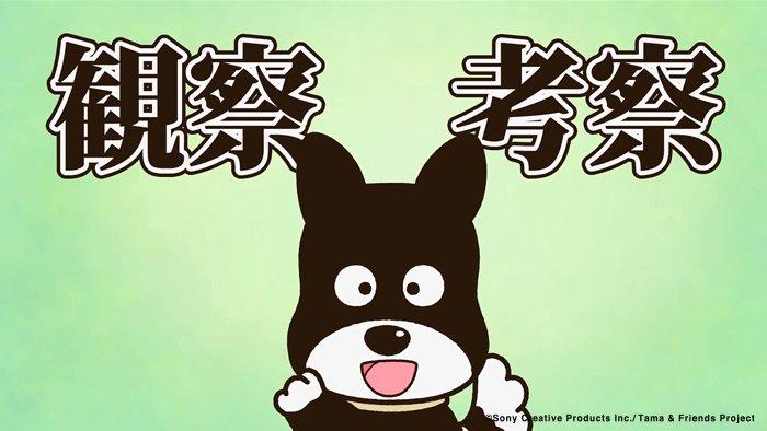 アニメ タマ&フレンズ~うちのタマ知りませんか?~ 今日のお話は「クロは名探偵」やっぱりクロの観察力はすごいです! 7: