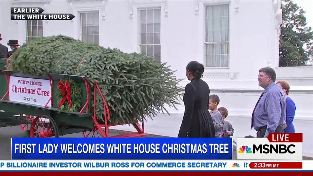 Michelle Obama welcomes the Obamas' final White House Christmas tree