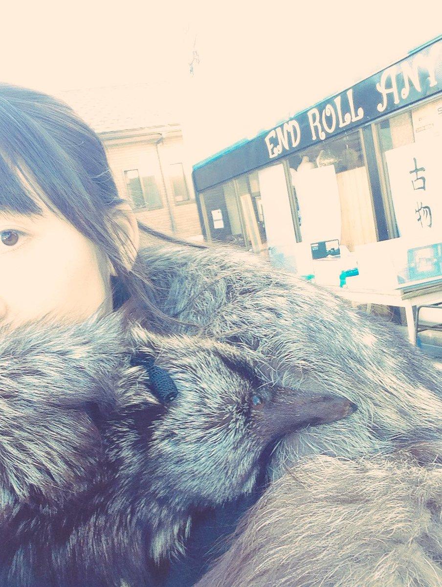 ぎんぎつね!衝動買いである。宮城県角田市にて。