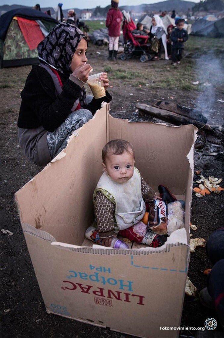 الاجيين السوريين