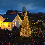 Icelandic Christmas trees for Greenland and Faroes