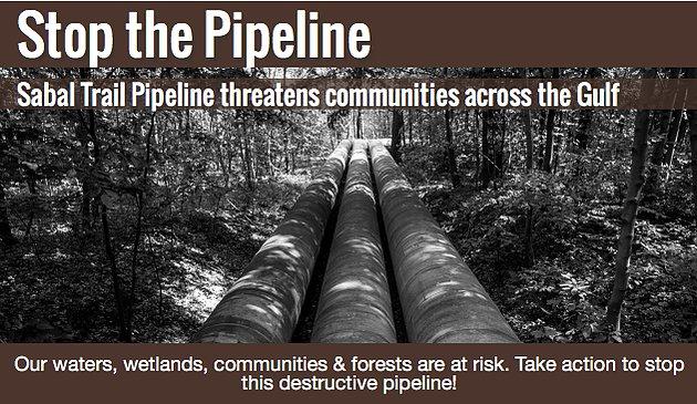 Stop. The. Pipeline. DAPL's Sister: #SabalTrailPipeline  #WaterIsLife #NoDAPL  https://t.co/PFvoCgHOxe https://t.co/eCq5fIyVuG
