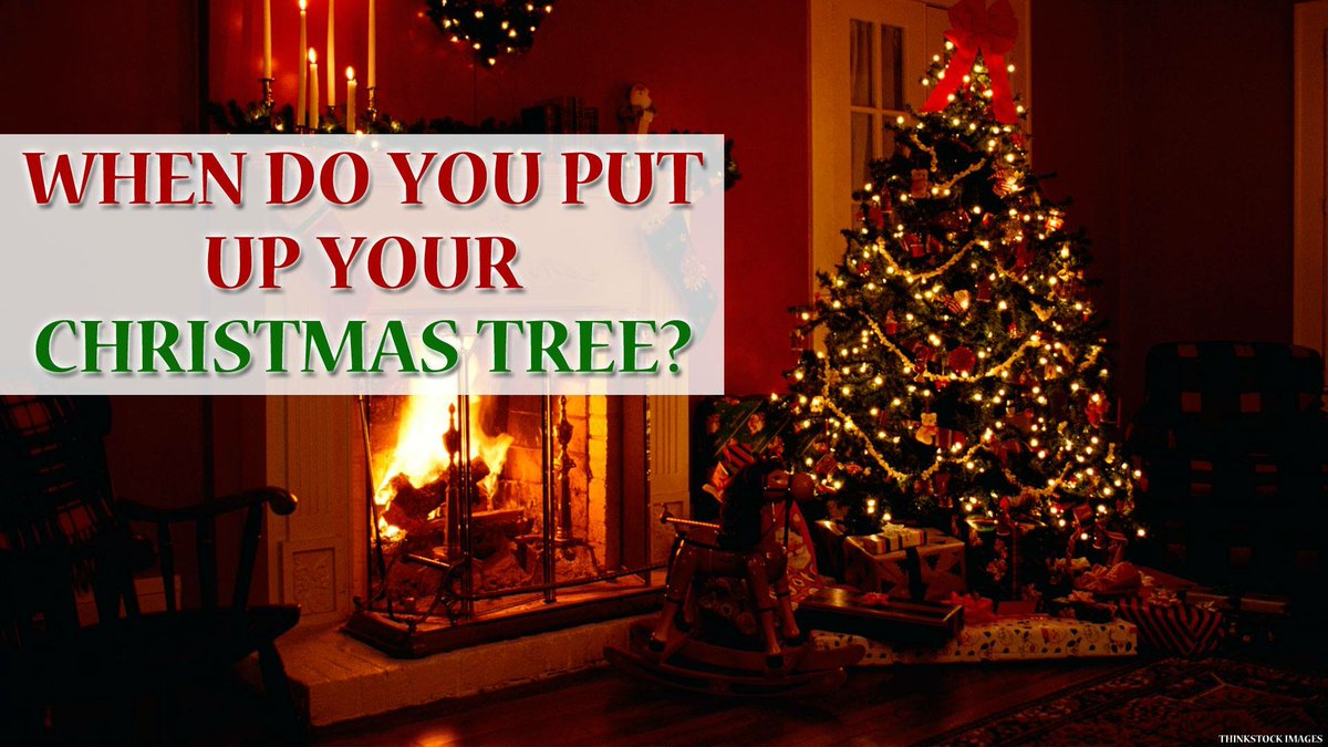 have you put up your christmas tree yet if no when will you - When Do You Put Up Your Christmas Tree
