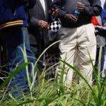 ODM MP Kills 1, Injures 2 Sisters [PHOTO]