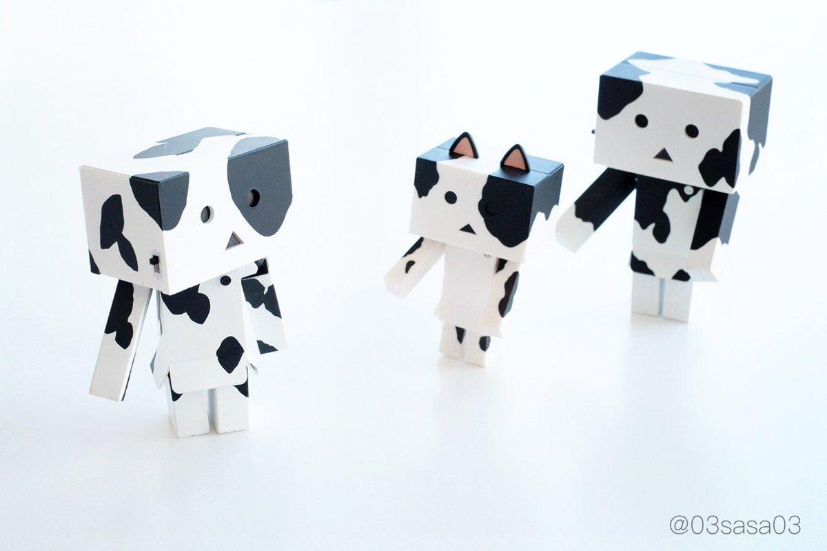 牛ニャンボー キタ━(゜∀゜)━!!牛ダンボーと並べたら鬼かわ(*'ω'*)♡#ダンボー #danboard #ニャンボ