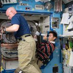 Spinal fluid changes in space may blur vision of astronauts, study finds