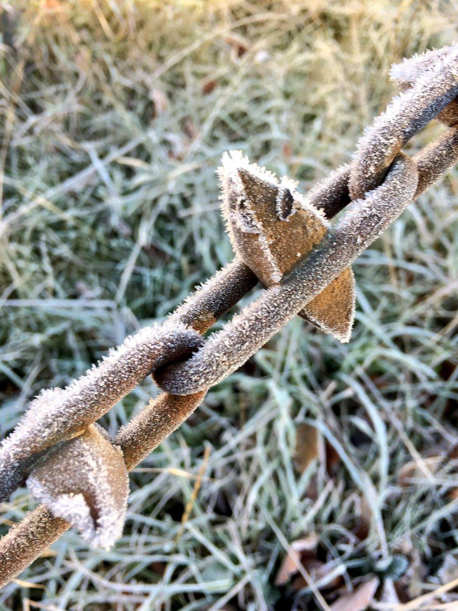 寒すぎて、色々フリージング。Freezing!! Everything get frost!