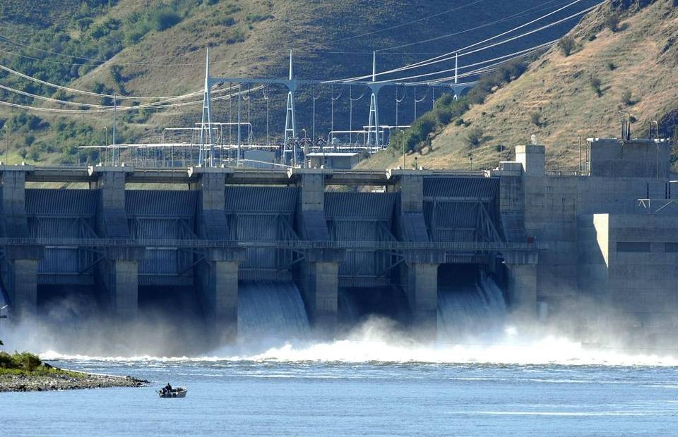 Boise salmon and dam issues