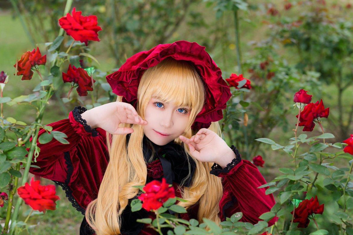 【コスプレ】ローゼンメイデン:真紅「抱っこして頂戴。」本物の薔薇で撮影してきました!🌹✨Photo.紀昌さん