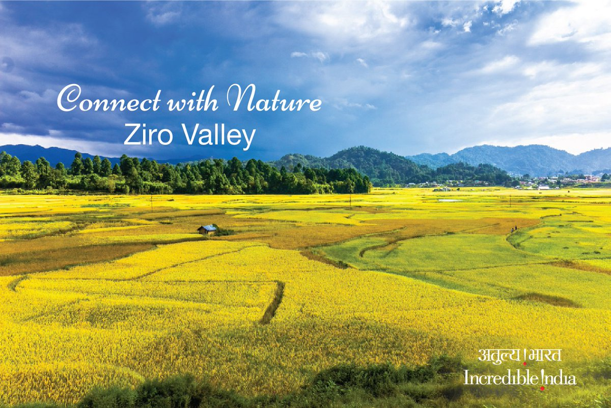 Ziro valley entices you with its splendid scenic charm. #IncredibleIndia ... Ziro valley entices you with its splendid scenic charm. #IncredibleIndia … Cyku9qcUcAA1OyS
