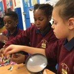 Teaching primary school children about mental health