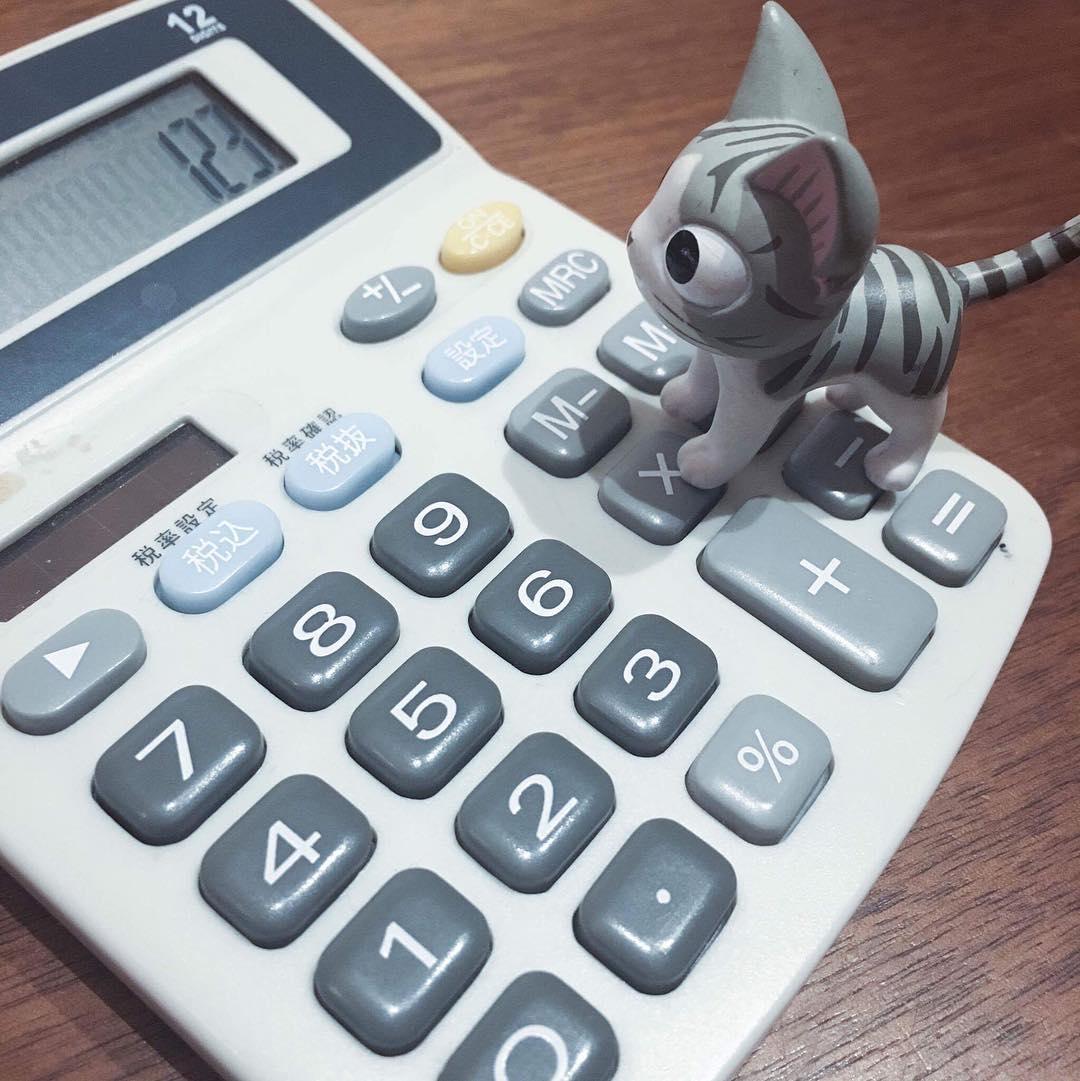 パチパチ、 パチリ!まだたりない、、ブチョーにおこらえるな、、、。#こねこのチー #チーズスイートホーム #チー #猫