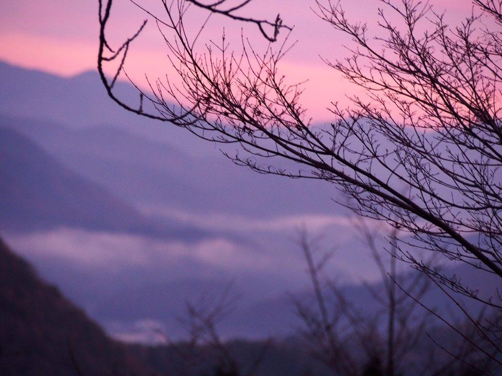 0時に家出発して、立雲峡へ雲海見に行ってきた。5時から登り始めたけど、今日は天候的に竹田城にかかる雲海見れなかった。天空