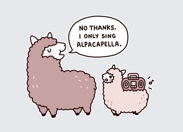 We often wonder whether alpacas get involved in festive carols around this time of year... https://t.co/dc31x9wGsd
